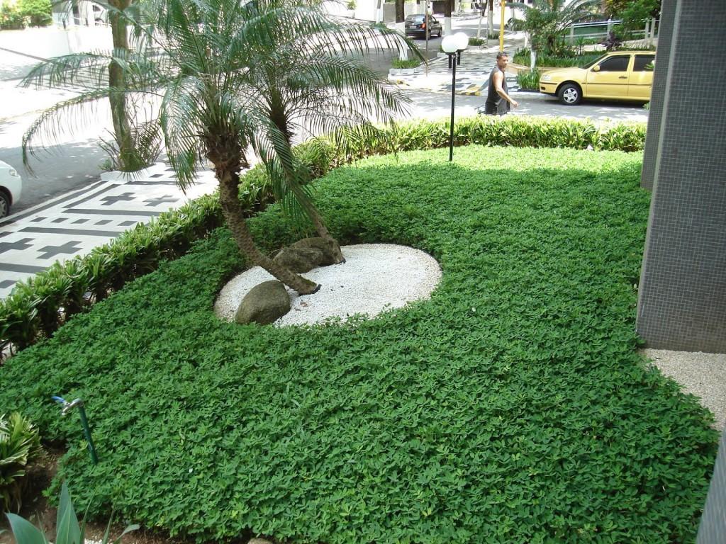 Jardim com Grama Amendoim